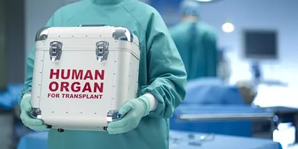 Всамом начале нового года все французы автоматом становятся донорами органов после смерти