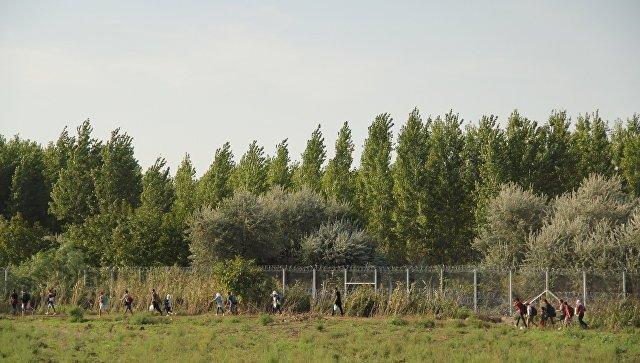 Венгрия завершила строительство 2-го забора награнице сСербией
