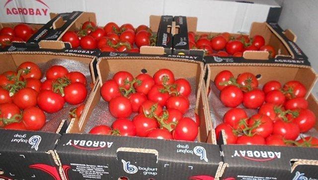 В Российскую Федерацию прибыла первая фура с20 тоннами турецких томатов