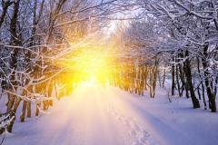 Праздники дня сегодня — 18 января 2018