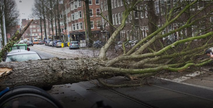 В Нидерландах ветер срывает крыши домов, в Германии отменили все поезда