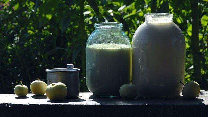 Россия сняла ограничения на поставки молока из Белоруссии