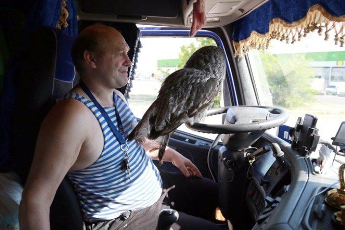 Как живут российские дальнобойщики: о зарплате, «плечевых» и «Платоне»