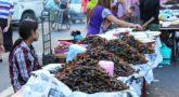Тараканы, китай, рынок - Фото Pixabay