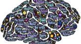Мозг, мысли - Фото Pixabay