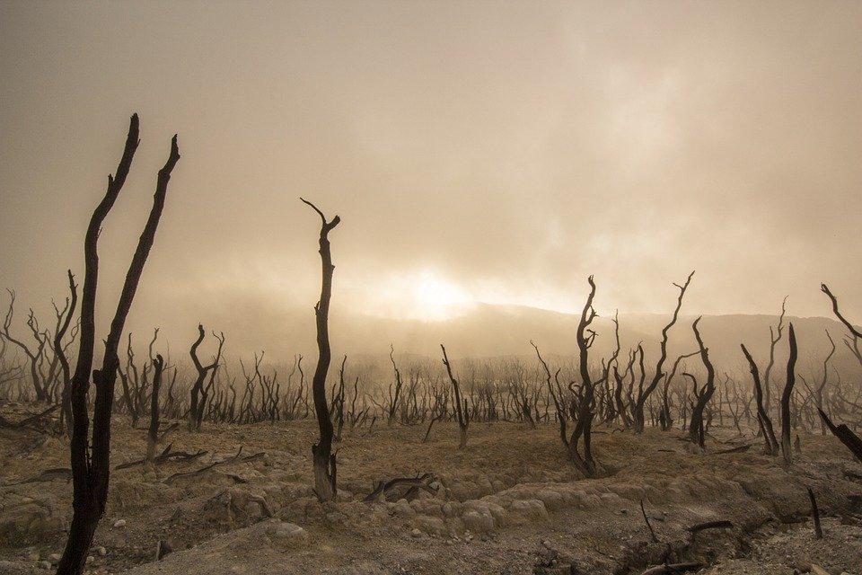 предсказания, сухая земля, катастрофа