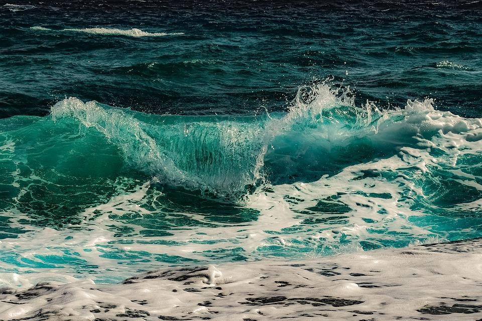 Международная группа ученых нашла хламидии в глубинах Северного Ледовитого океана