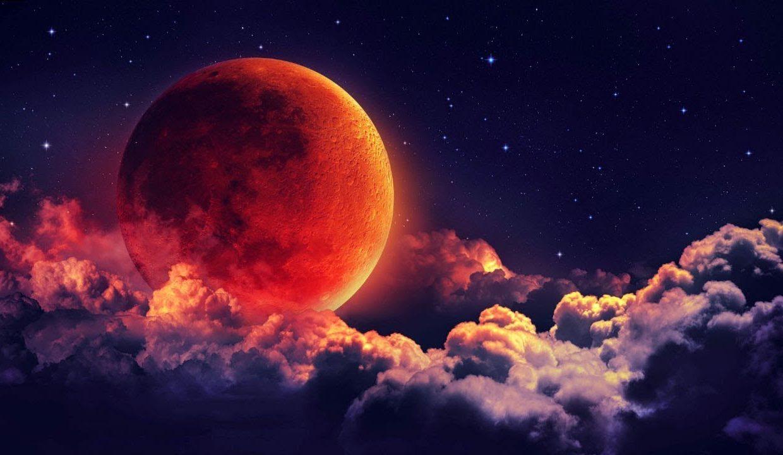 Календарь дачника на апрель 2020 года: когда, и какие культуры можно сеять, рекомендуемые виды работ с учетом лунного календаря