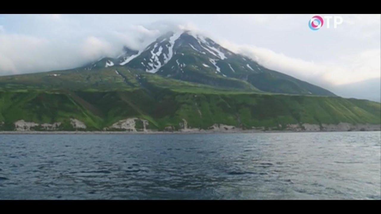 В МЧС назвали высоту волны цунами после землетрясения на Курилах магнитудой 7,2