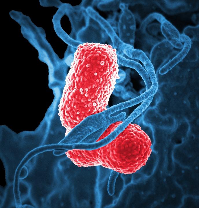 Коронавирус в России — где и сколько заболевших на сегодня, последние новости на 18 апреля 2020: Китайский препарат от малярии помогает от COVID-19