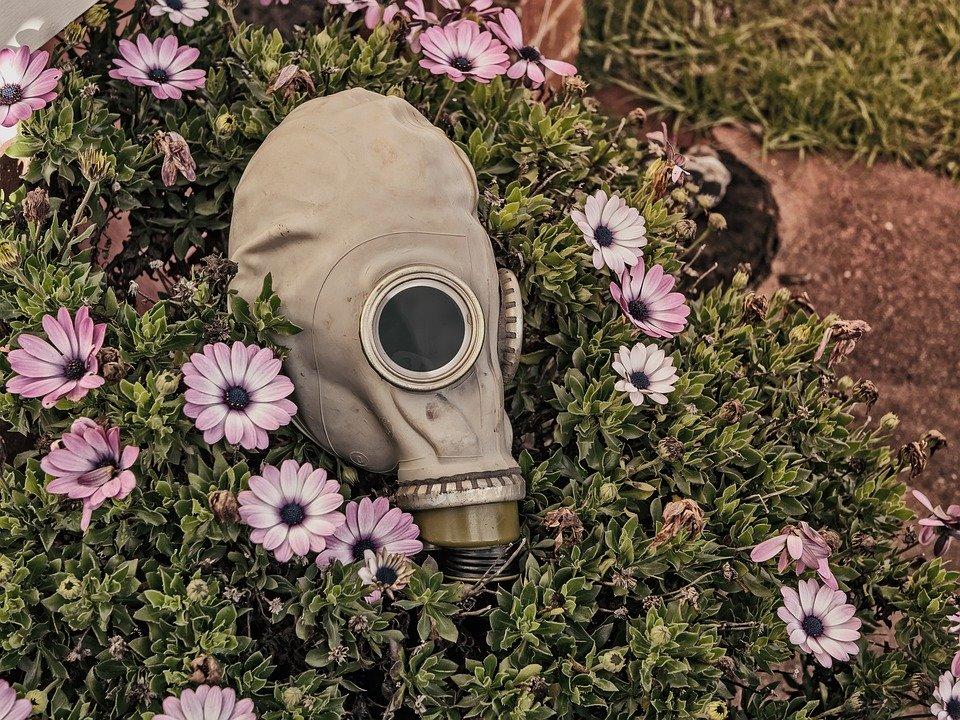 Где и сколько заболевших Коронавирусом в России на сегодня, последние новости на 20 апреля 2020: Минздрав заявили о «полувоенном сценарии» борьбы с COVID-19