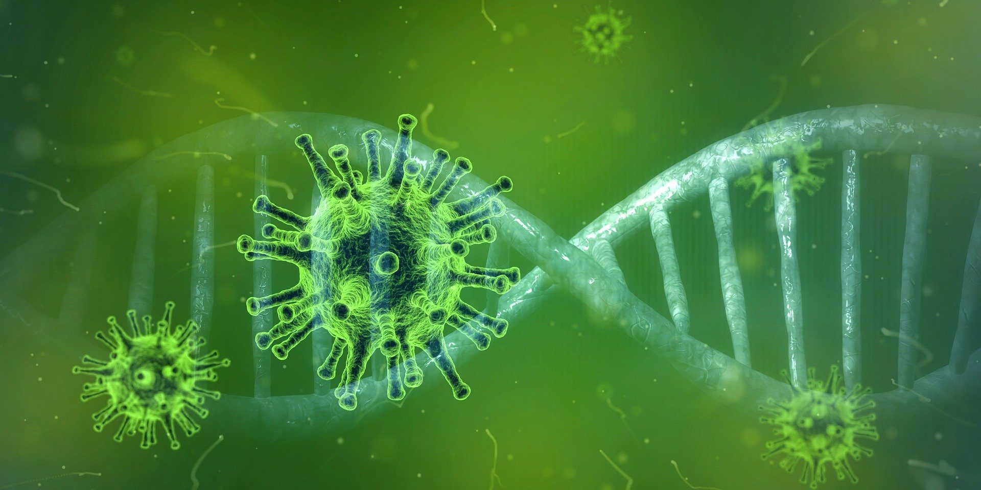 Инфекционист рассказал о странностях коронавируса: поведение COVID-19 не укладывается в классические рамки эпидемиологии