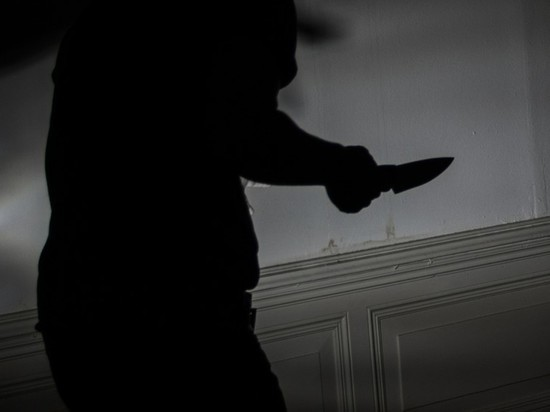 СМИ: питерский школьник ночью устроил бойню в своем доме