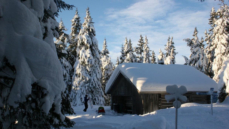 Россиянам рассказали, какую зиму ждать в этом году